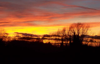 20131208_Sunset_Over-Goose-Acre_copse