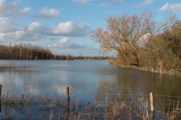 Flooding, Lower Radley, 16 February 2014. Photograph by B Crowley.