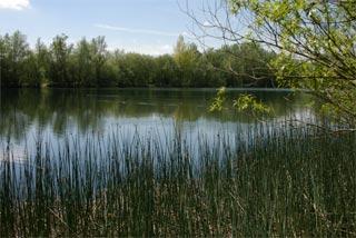 LakeIMGP3165